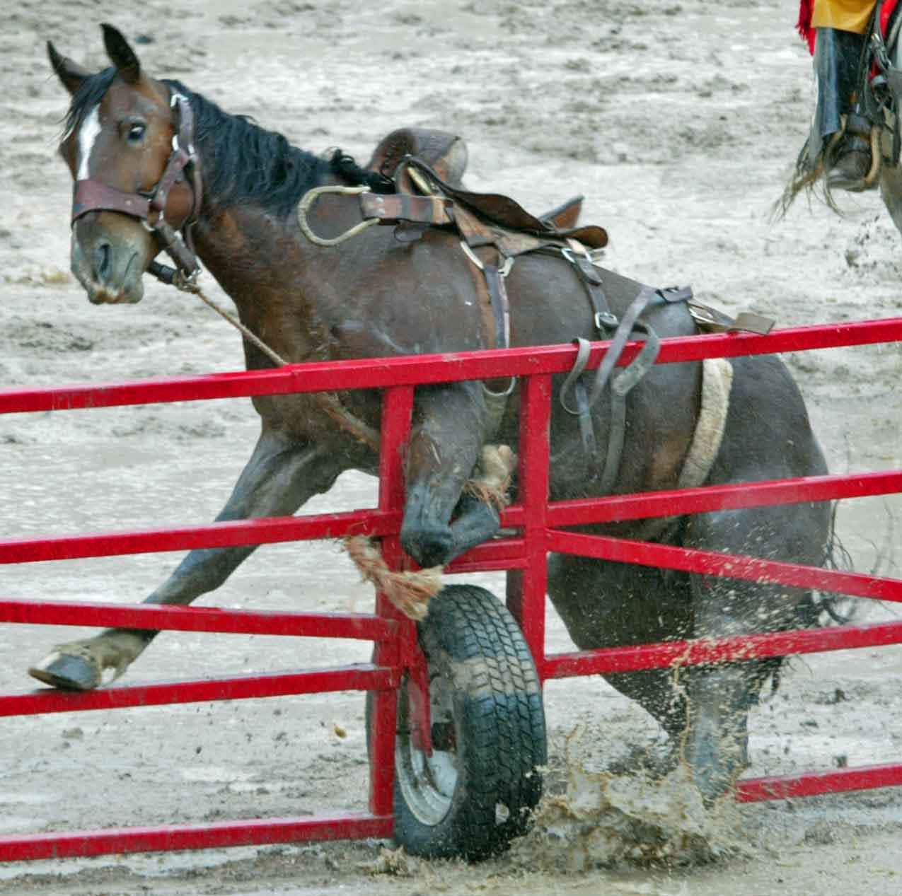2007 Cheyenne Frontier Days Rodeo